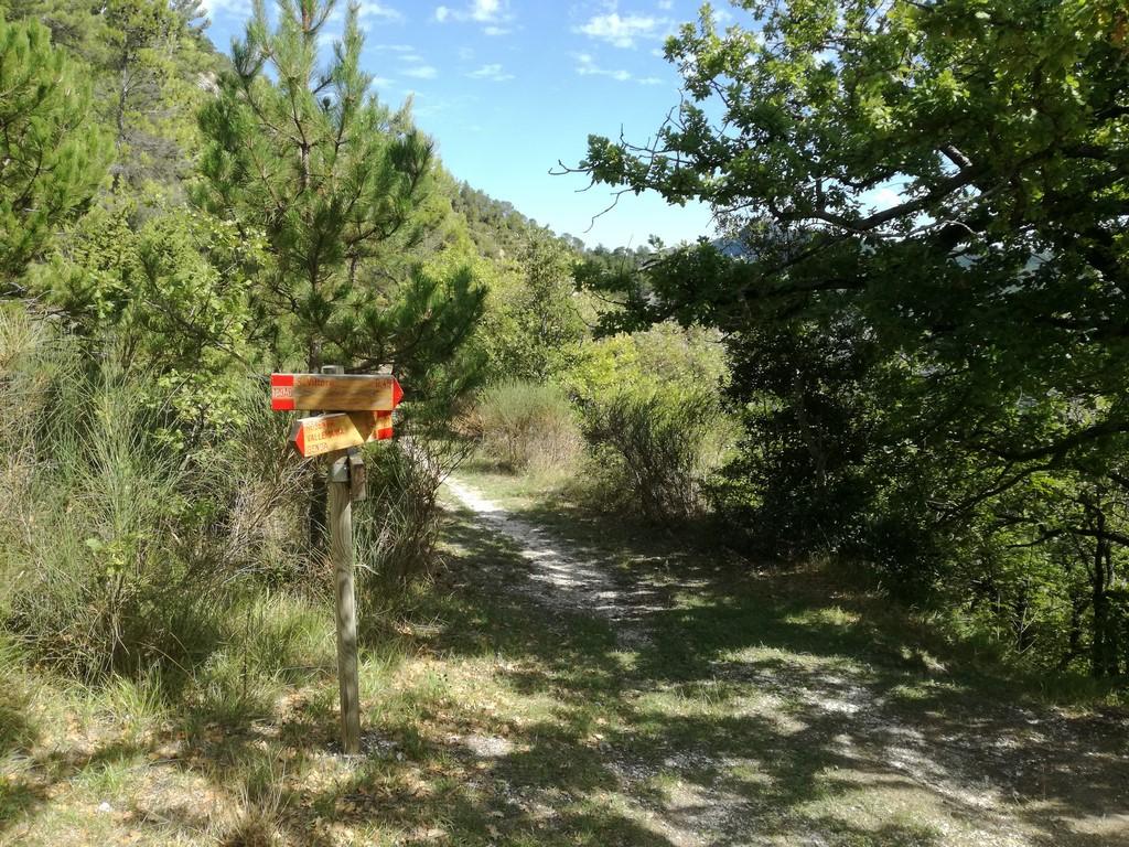 Itinerari escursionistici Monte San Vicino e Canfaito