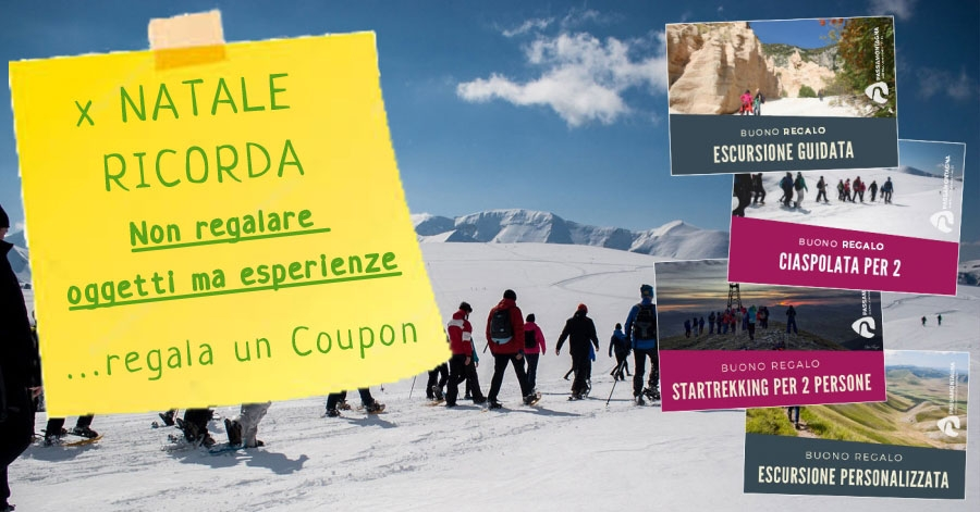 Coupon Regalo per Natale 2019